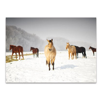 Leader of the Pack Wall Art Print