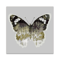 Painted Butterfly I Wall Art Print