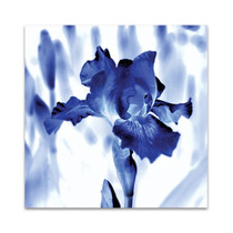 Blue Ice Iris Wall Art Print