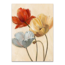 Poppy Palette II Wall Art Print