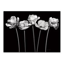 Tulips at Night Wall Art Print