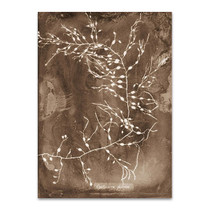Natural Forms Sepia II Wall Print