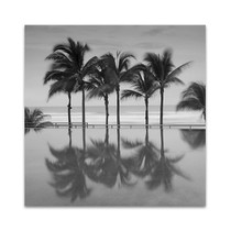 Palm Trees Serenity Wall Art Print