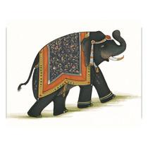 India Elephant I Wall Art Print