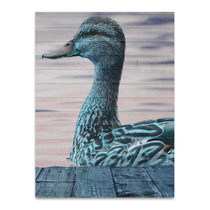 Aqua Duck Wall Art Print