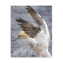 In Flight II Wall Art Print