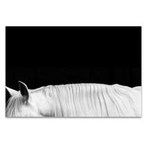 White Horse on Black II Wall Art Print