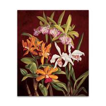 Orchid Trio II Wall Art Print
