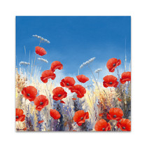 Poppy Meadow I Wall Art Print
