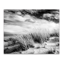 Beach Dunes Wall Art Print