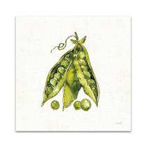 Veggie Market Peas IV Wall Art Print
