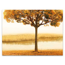 Golden Morning I Wall Art Print