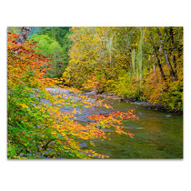 River IV Wall Art Print