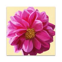 Flower Art IV Wall Art Print