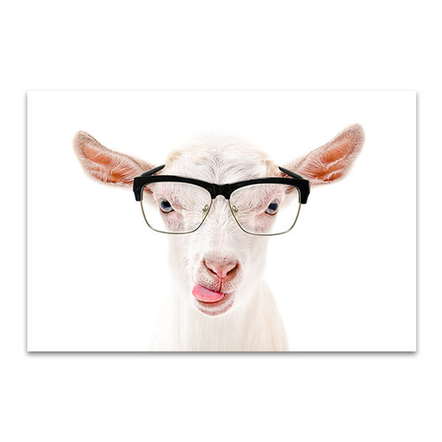 Goat In Glasses Canvas Art Print
