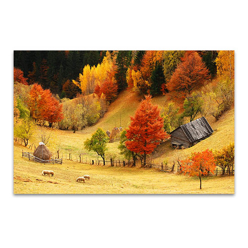 Mountain and Sheeps Wall Canvas Print