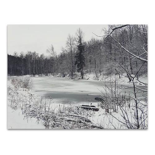 Winter Nature Trees Canvas Art Print