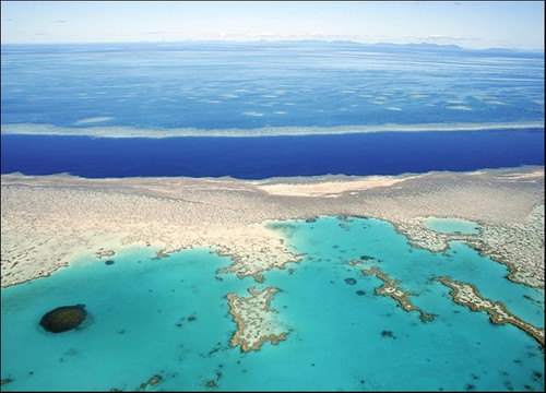 Great Barrier Reef Australia Wall Art Print