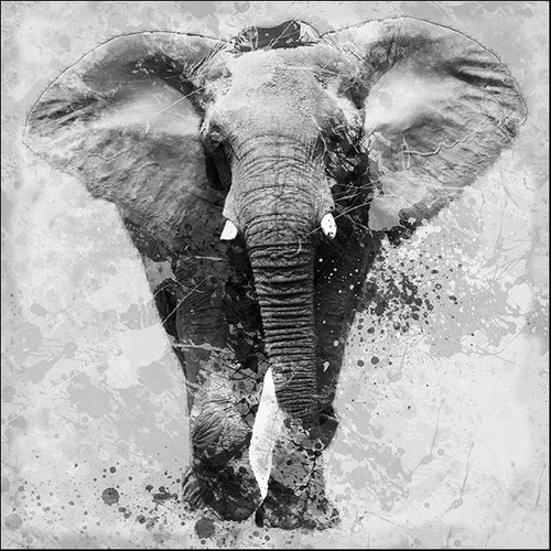 Proud Elephant Wall Art Print
