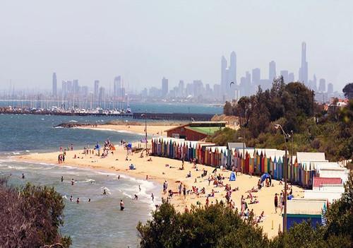 Brighton Beach Australia Wall Art Print