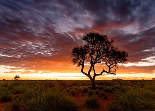 Sunset at Pilbara Region Wall Art Print