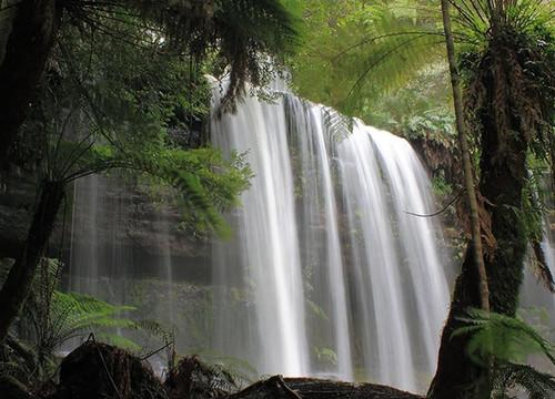 Waterfall Tasmania Australia Wall Art Print