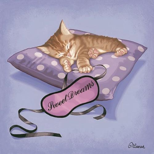 Sleeping Kitten Wall Art Print