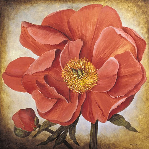 Poppy II Wall Art Print