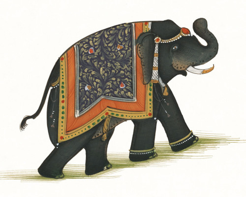 India Elephant I Wall Art Print