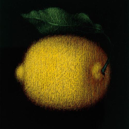 Lemon Wall Art Print