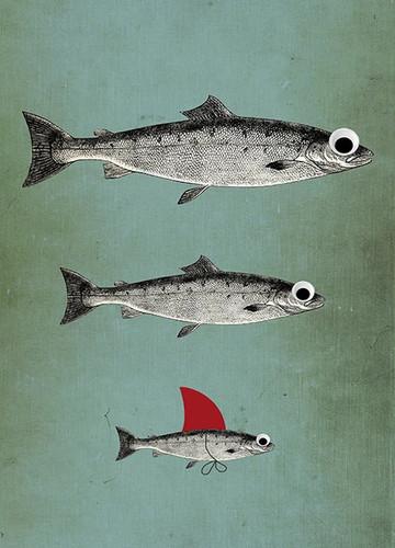 Surviving Fish Wall Art Print