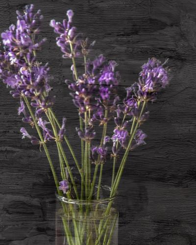 Lavender Jar I Wall Art Print