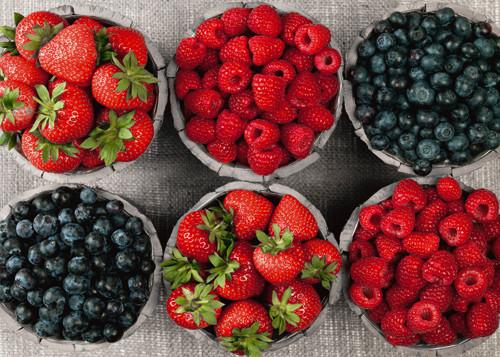 Berries Wall Art Print