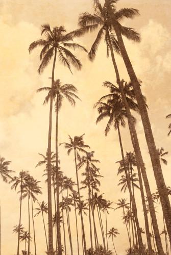 Palm Vista V Wall Art Print
