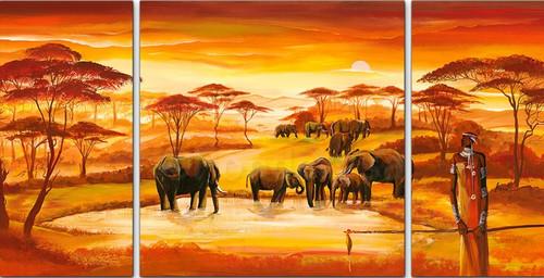 The Elephant Watcher