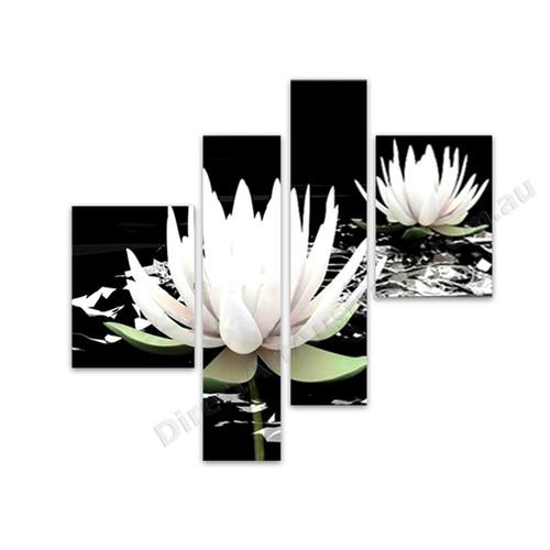 White Lotus