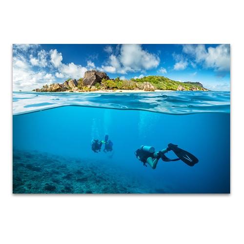 Divers and Corals Art Print
