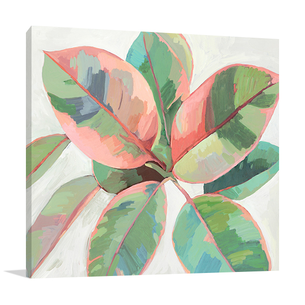 Pink Ficus II Wall Art Print