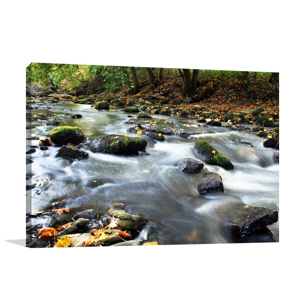 Adelaide Art Print Cascade Creek