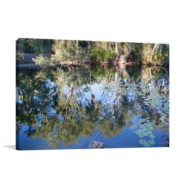 Adelaide River Crocodile Print Art Canvas
