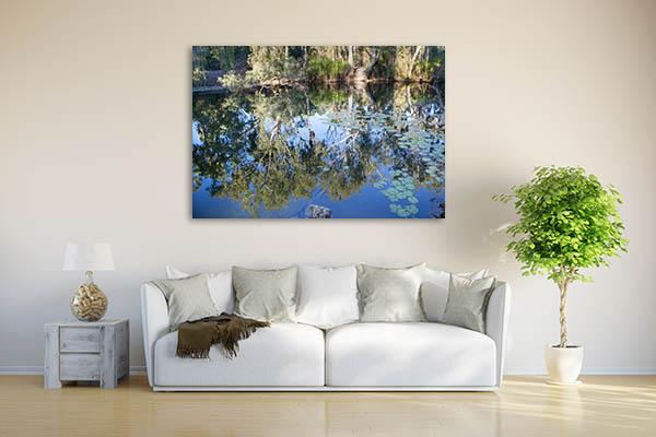 Adelaide River Crocodile Photo Wall Art