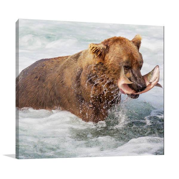 Alaska Bear Art Prints