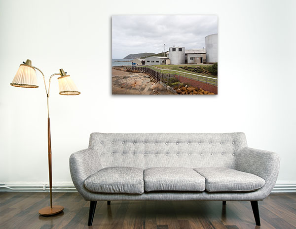 Albany Perth Art Print Whaling Station Canvas Prints