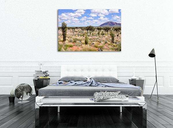 Alice Springs Desert Artwork
