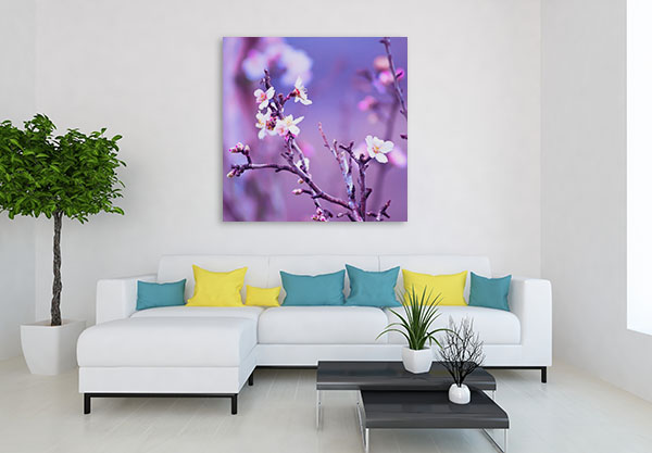 Almond Tree Art Prints