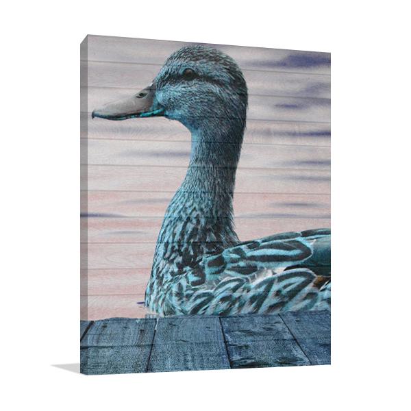 Aqua Duck Wall Art Print Canvas