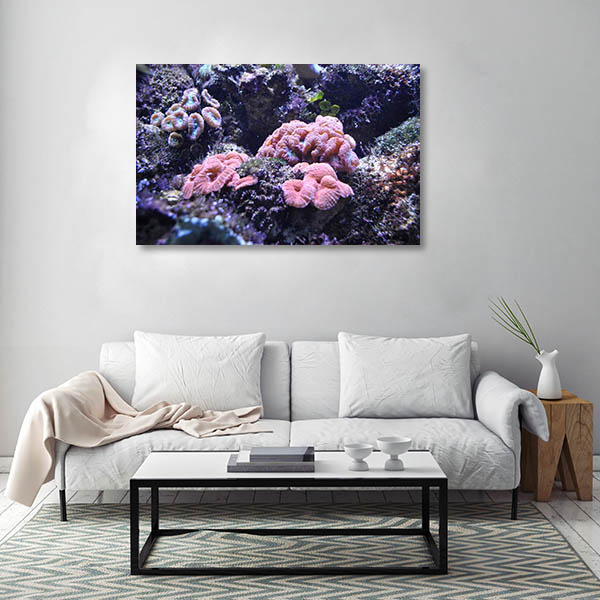 Aquarium Sydney Art Print Sea Anemone Artwork
