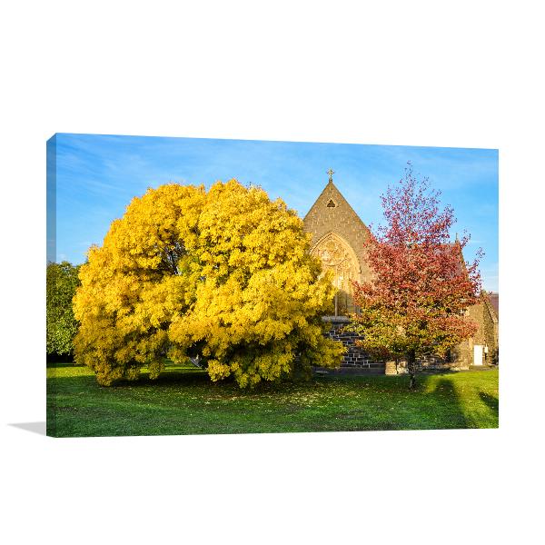 Autumn Colours in Ballarat Canvas Prints