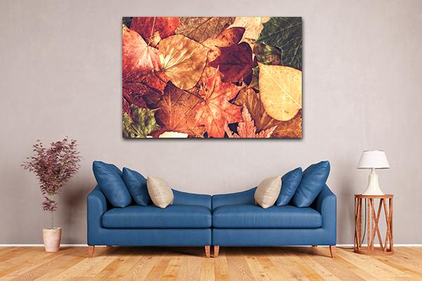 Autumn Leaves Art Prints