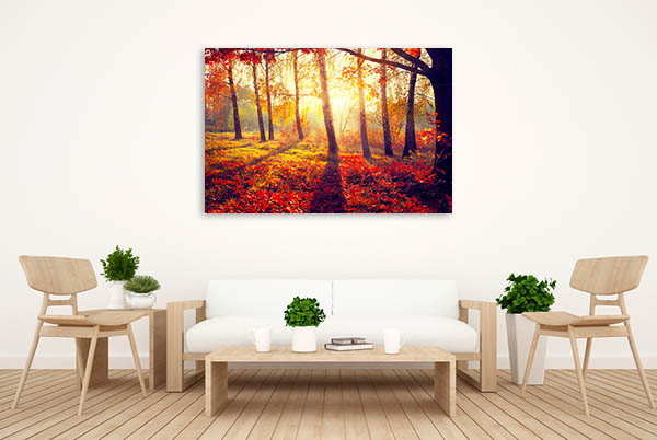 Autumn Sun Rays Prints Canvas
